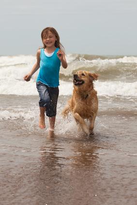 3 grunde til at tage hunden med på ferie